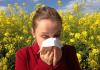 ambrozija-alergija